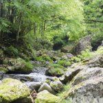 フライフィッシングは日本の渓流や湖で有効ですか?