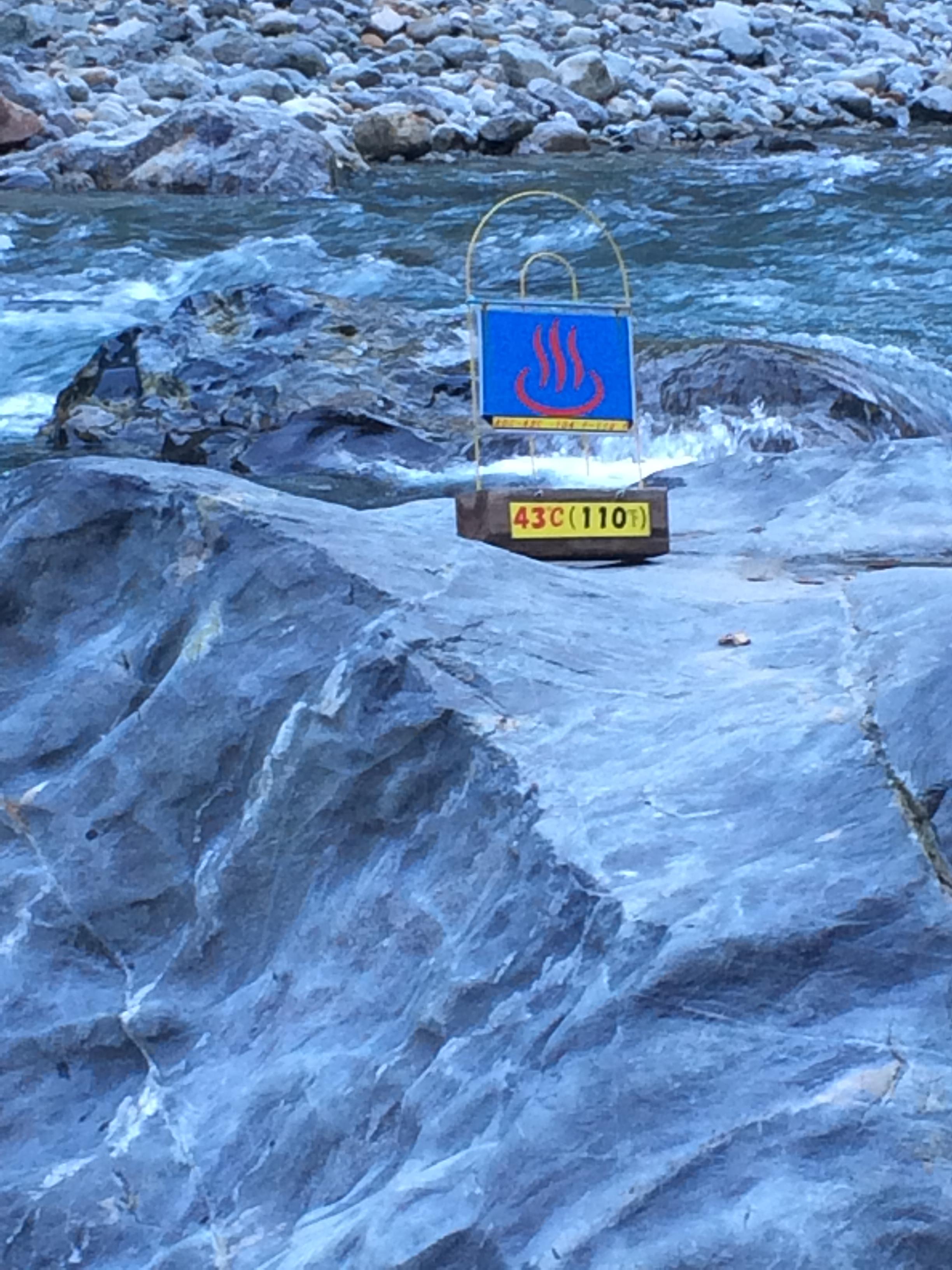 函館熱帯植物園のサル山で小ザルがダイブ!
