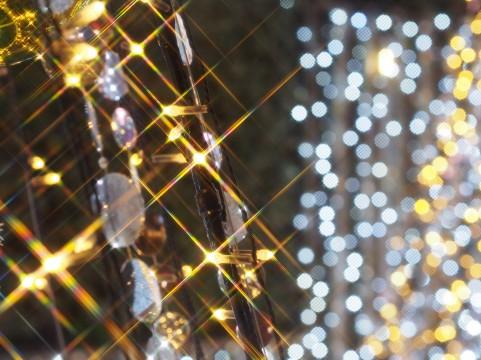 冬の北海道イルミネーションとミュンヘン・クリスマス市