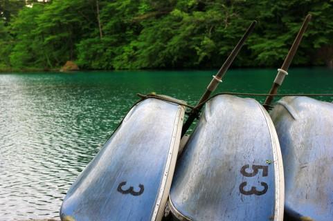 本栖湖のヒメマス釣り2015解禁!釣果は上々!!
