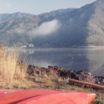 西湖ヒメマス釣り2015年も解禁!魚影は昨年の4倍濃い!