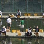 北海道のフライフィッシング用管理釣り場はここ!