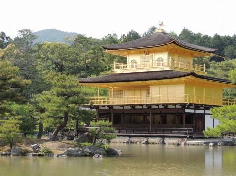 京都府でフライフィッシングのできる管理釣り場はここ!